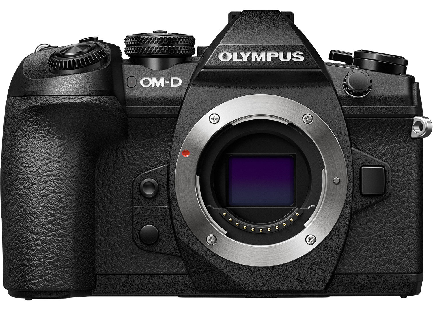 Olympus For Wildlife Photography Reasons To My Switch