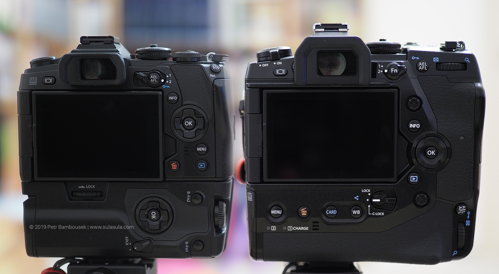Side by side comparison of Olympus E-M1 Mark II with grip (left) a Olympus E-M1X (right)